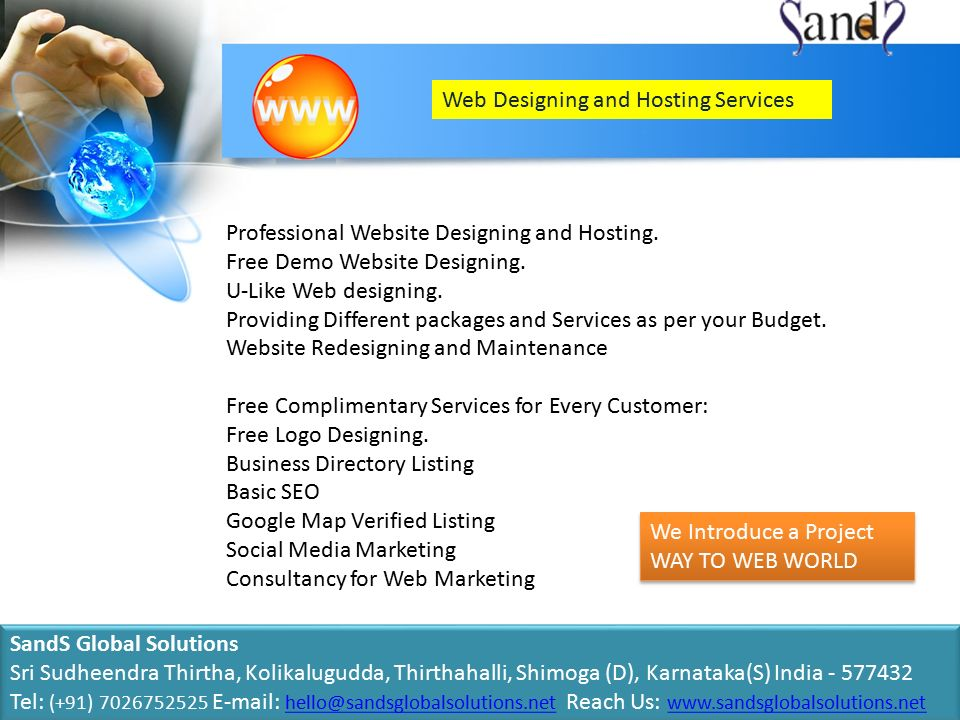 Web Designing and Hosting Services