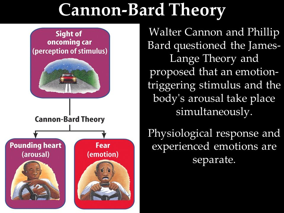briefly describe the following biopsychology theories of emotion darwin james lange cannon bard limb Lecture 3: theories of emotion csci 534(affective computing) –lecture by jonathan gratch wilhelm wundt, james russell, lisa feldman barrett csci 534.