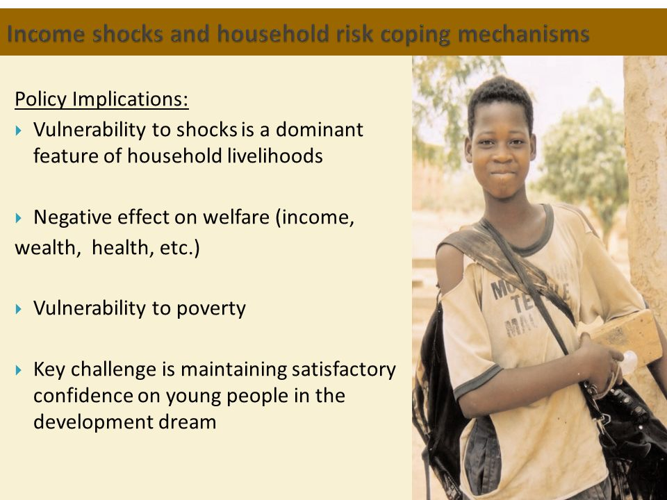 Income shocks and household risk coping mechanisms