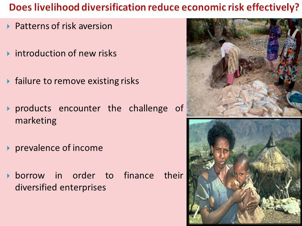 Does livelihood diversification reduce economic risk effectively