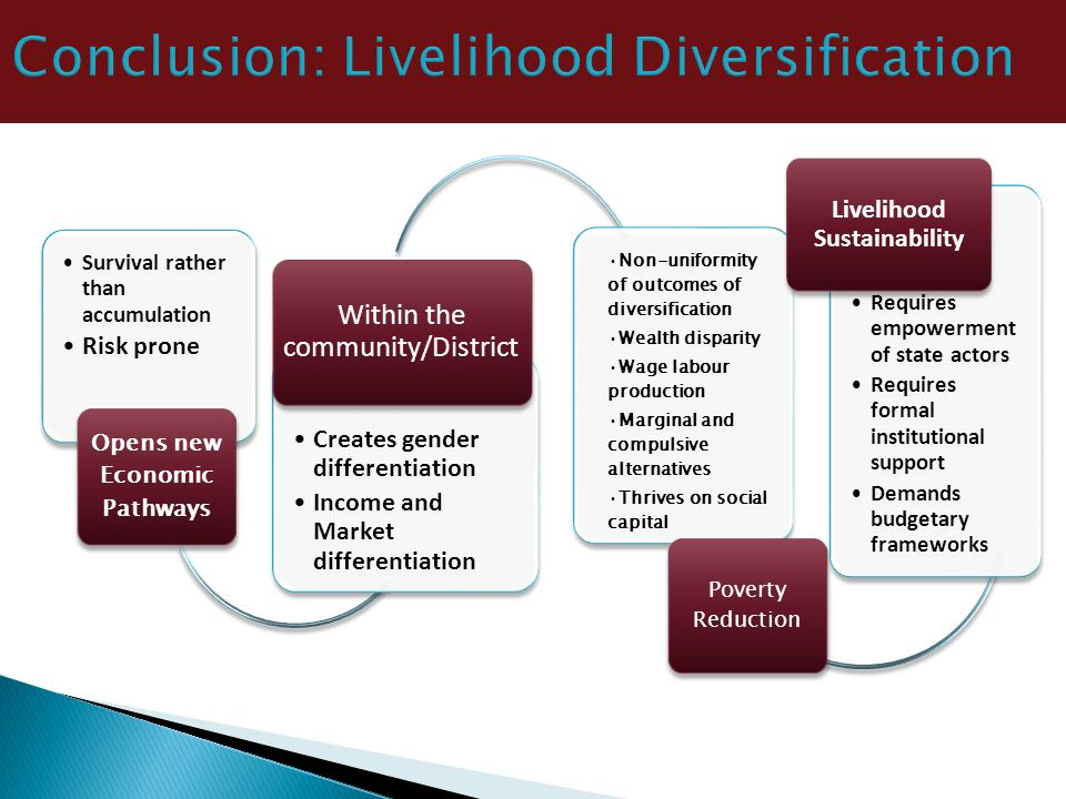 Conclusion: Livelihood Diversification