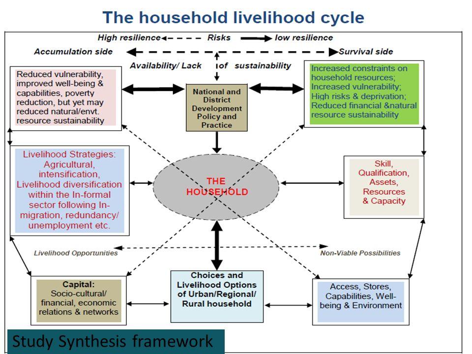 Study Synthesis framework