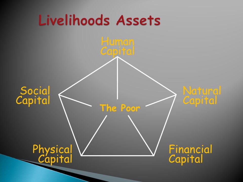Livelihoods Assets Human Capital Social Capital Natural Capital