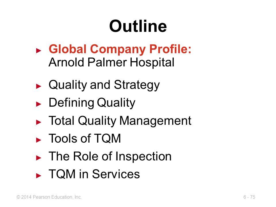Outline Global Company Profile: Arnold Palmer Hospital