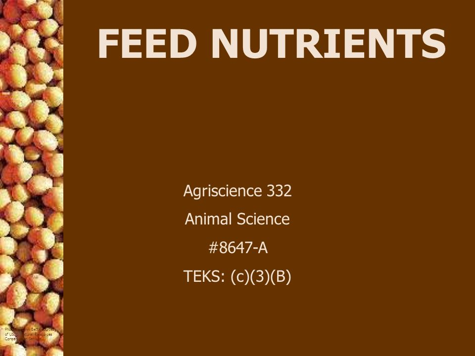 FEED NUTRIENTS Agriscience 332 Animal Science #8647-A TEKS: (c)(3)(B)
