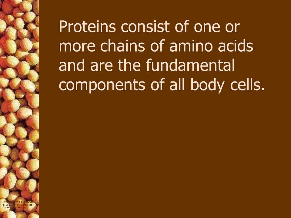Proteins consist of one or more chains of amino acids and are the fundamental components of all body cells.