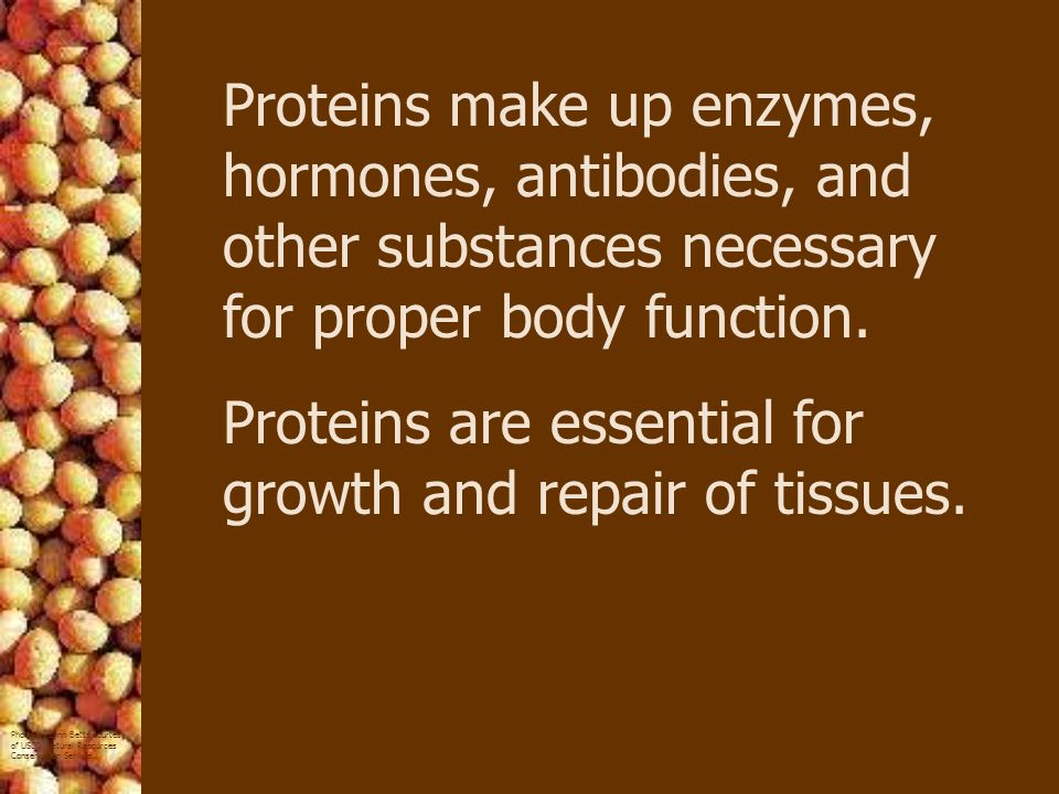 Proteins make up enzymes, hormones, antibodies, and other substances necessary for proper body function.