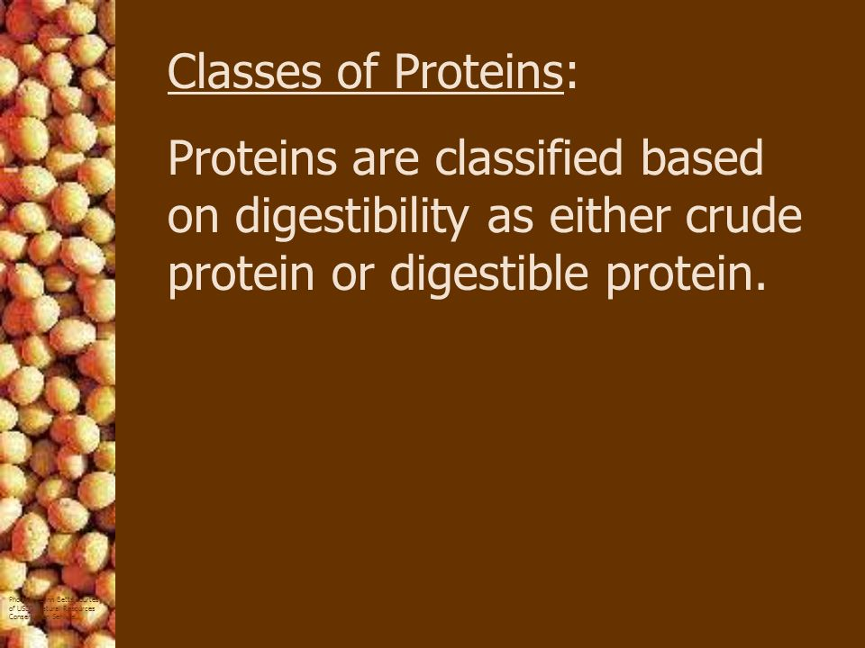 Classes of Proteins: Proteins are classified based on digestibility as either crude protein or digestible protein.