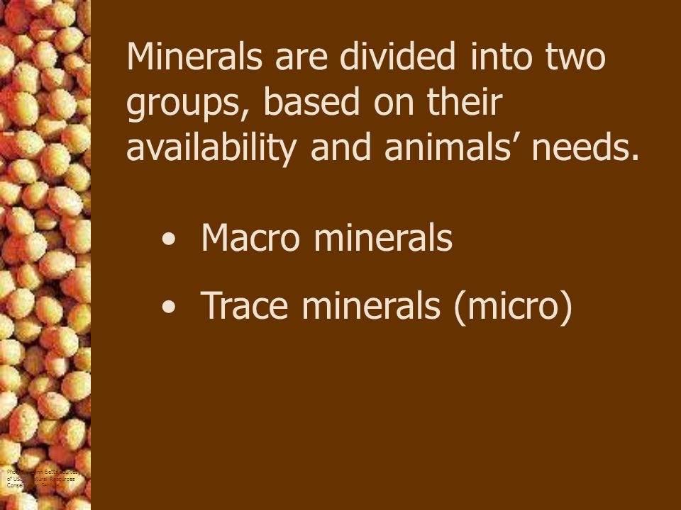 Minerals are divided into two groups, based on their availability and animals' needs.