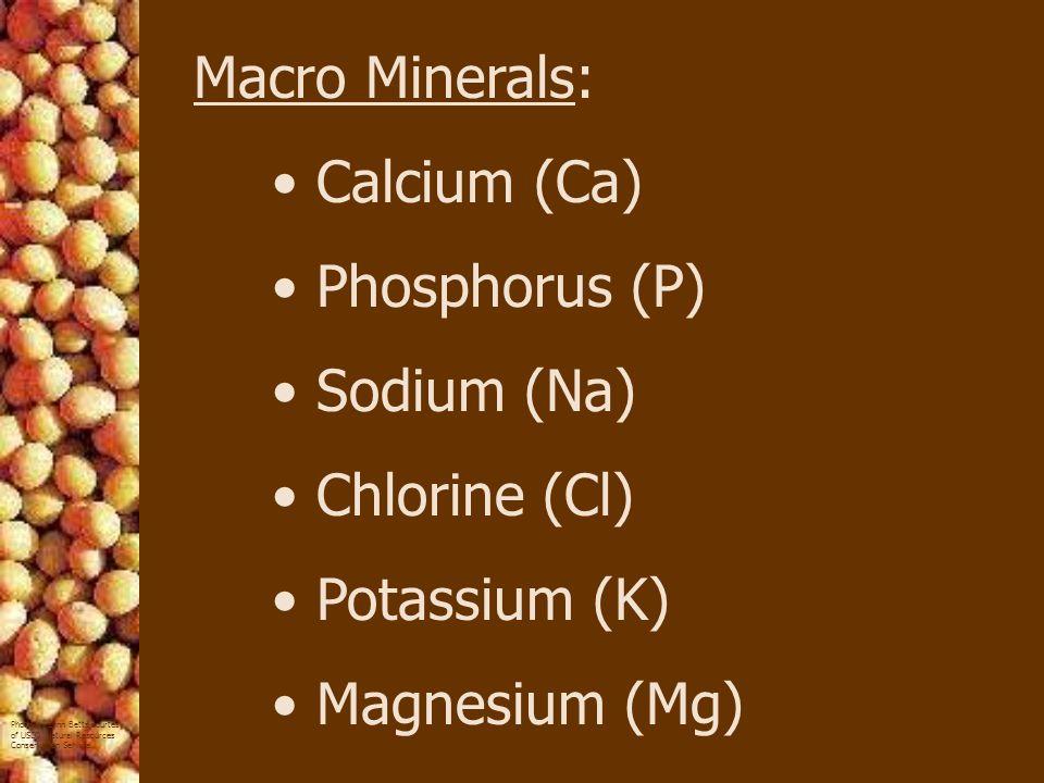 Macro Minerals: Calcium (Ca) Phosphorus (P) Sodium (Na) Chlorine (Cl) Potassium (K) Magnesium (Mg)