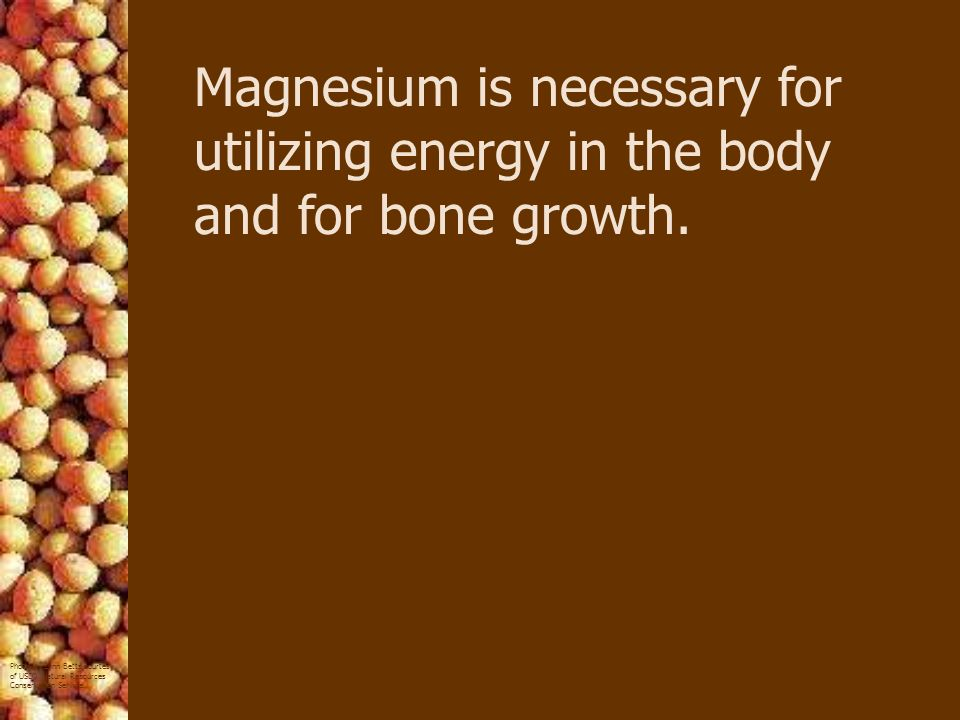 Magnesium is necessary for utilizing energy in the body and for bone growth.