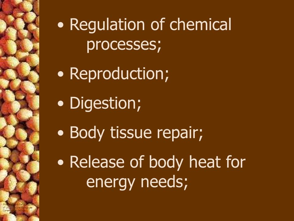 Regulation of chemical processes;