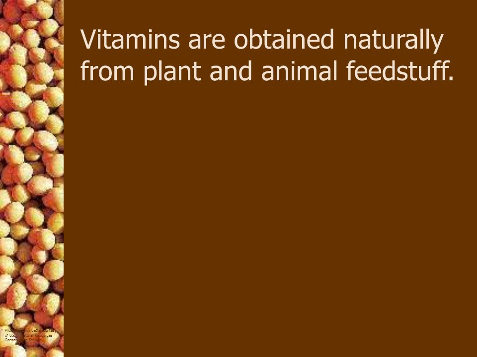 Vitamins are obtained naturally from plant and animal feedstuff.