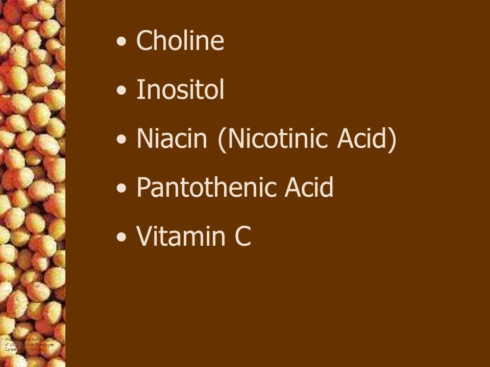 Choline Inositol Niacin (Nicotinic Acid) Pantothenic Acid Vitamin C