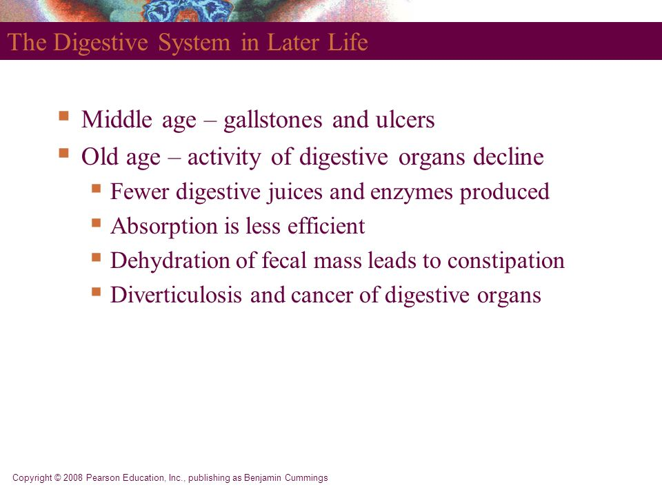 The Digestive System in Later Life