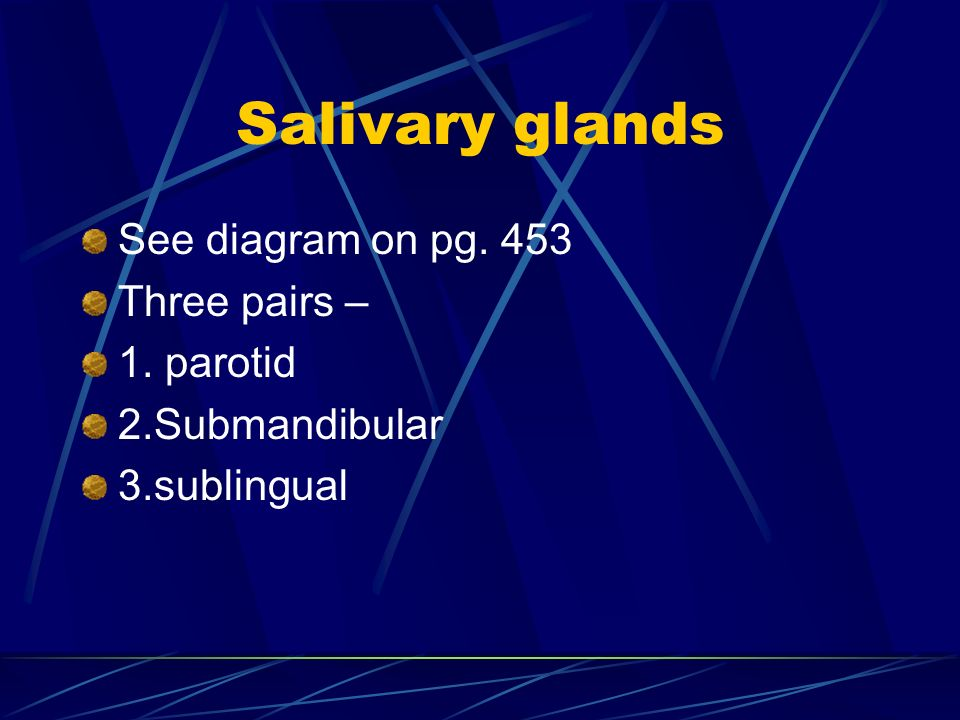 Salivary glands See diagram on pg. 453 Three pairs – 1. parotid