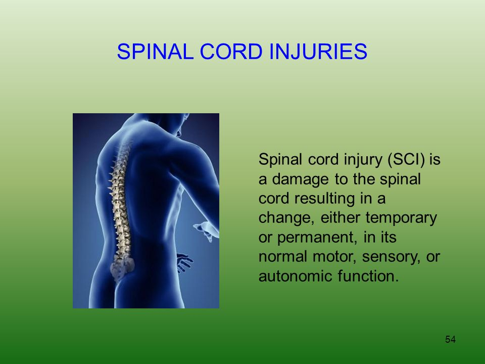 spinal cord injuries Spinal cord injuries can affect the major bundle of nerves carrying signals to and from the brain to the rest of the body learn more from webmd.