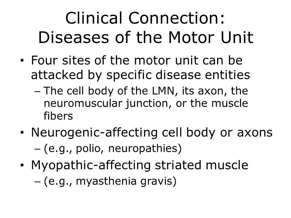 Clinical Connections Ppt Download