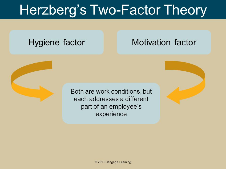 frederick herzberg two factor theory pdf