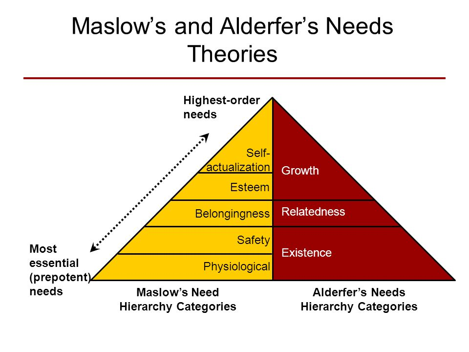 alderfers erg theory and maslows hierarchy needs theory essay Maslow's theory is based on a simple premise: human beings have needs that  are  erg theory of clayton alderfer is a modification of maslow's hierarchy of.