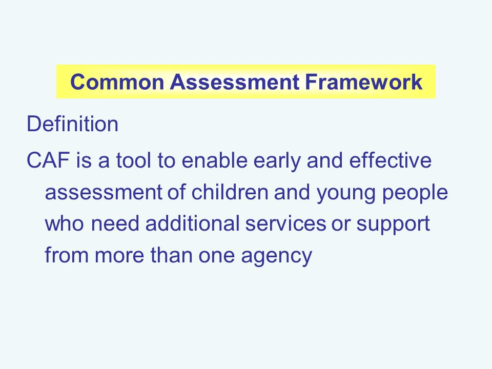 Assess the development needs of children or young people Essay Sample