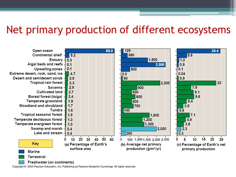 Net primary production of different ecosystems