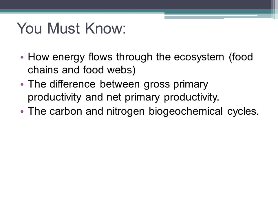 You Must Know: How energy flows through the ecosystem (food chains and food webs)