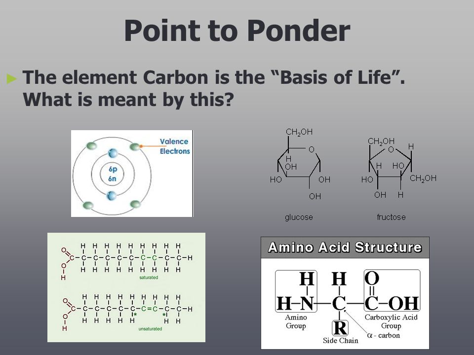 Point to Ponder The element Carbon is the Basis of Life . What is meant by this