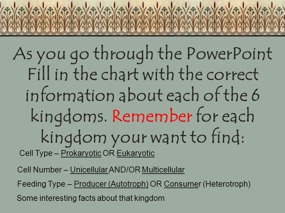 As you go through the PowerPoint Fill in the chart with the correct information about each of the 6 kingdoms. Remember for each kingdom your want to find: