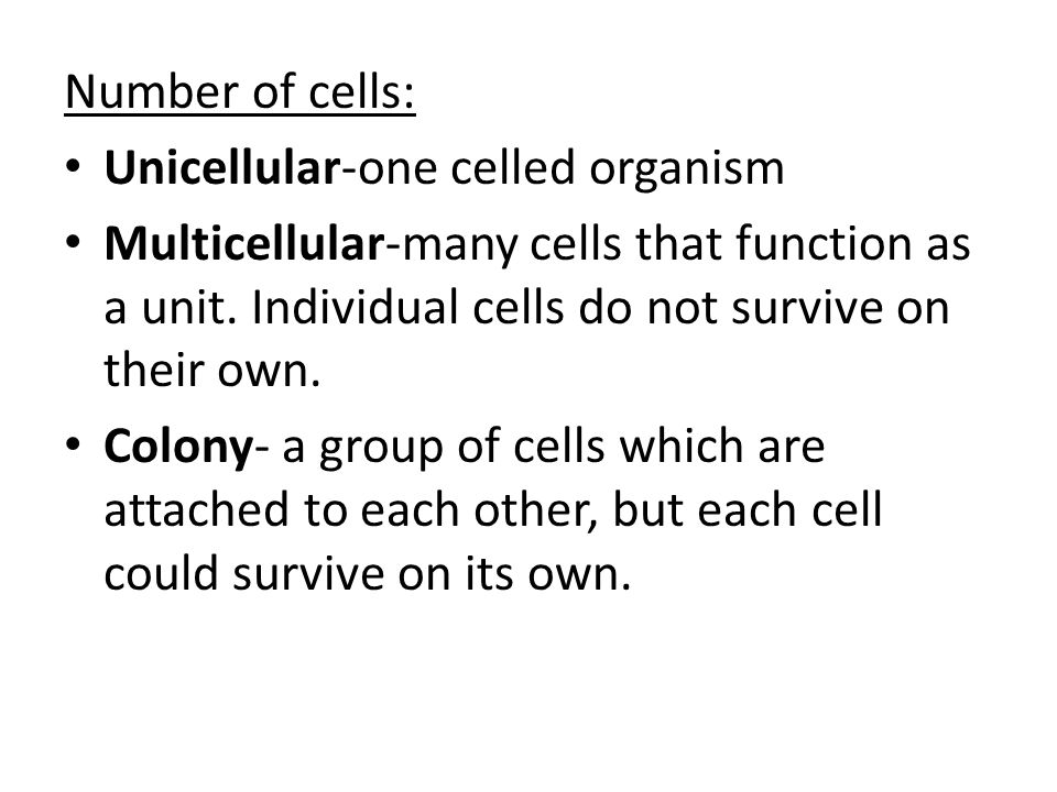 Number of cells: Unicellular-one celled organism. Multicellular-many cells that function as a unit. Individual cells do not survive on their own.