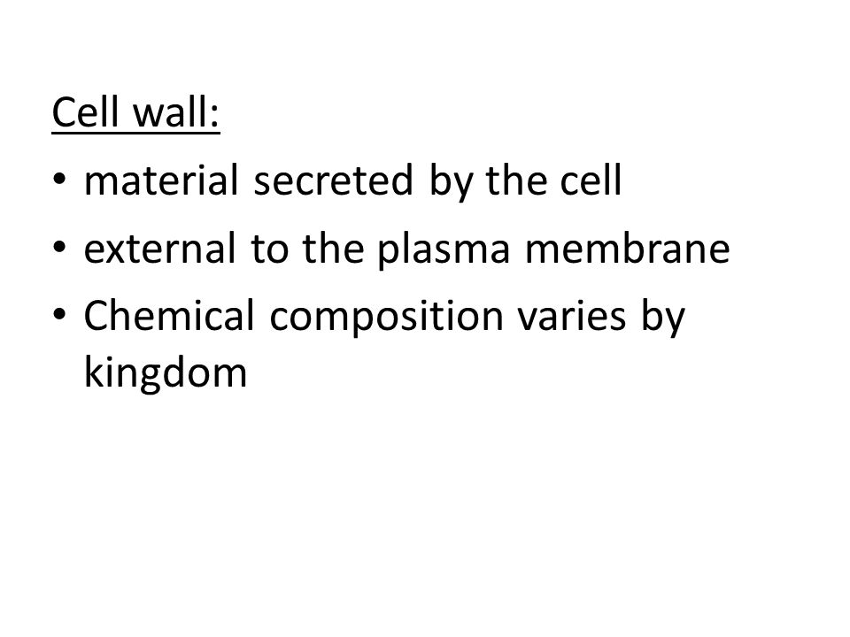 Cell wall: material secreted by the cell. external to the plasma membrane.