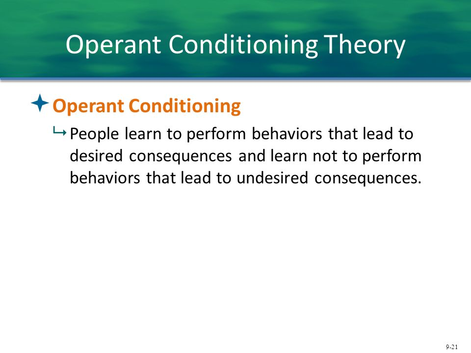 operant conditioning experiment essay In this research-paper, we will focus on a particular form of learning—operant learning, which is better known as operant conditioning we will outline the basic historical background of operant conditioning as well as the key terms, ideas, and theory relevant to understanding this very important type of learning.