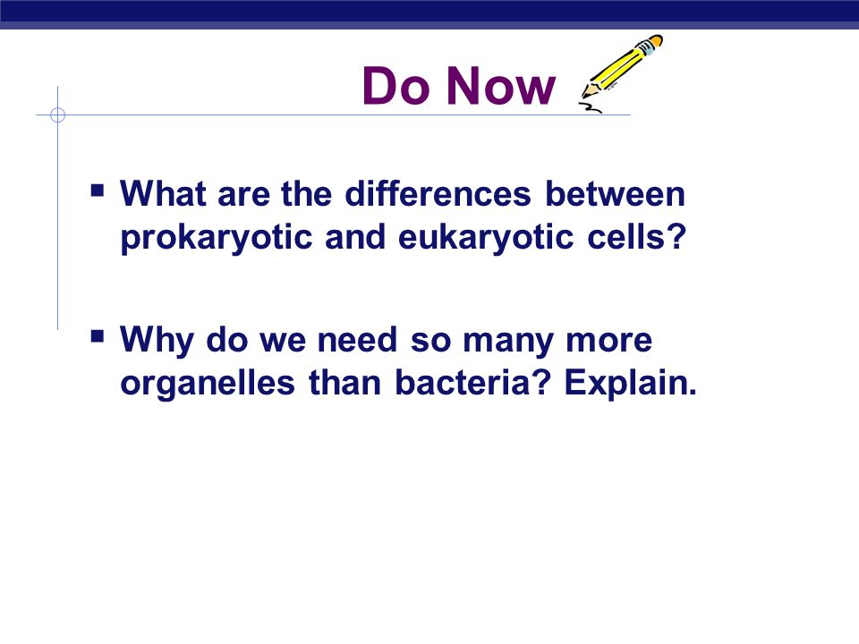 difference between eukaryotic and prokaryotic cells pdf