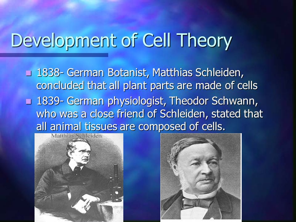 The Cell Theory. - ppt download
