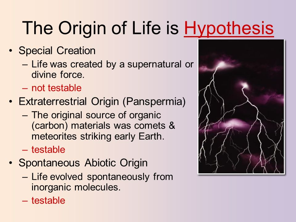 chemical origin of life pdf