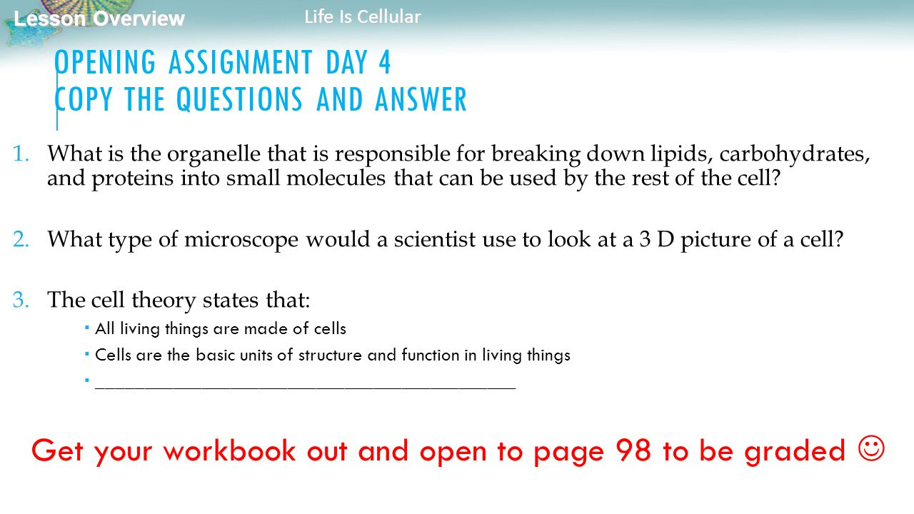 100+ [ Bio Worksheet Answers ] | new page mrsolson com unit 7 ...