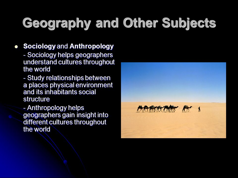 sociology and its relationship with other social sciences ppt