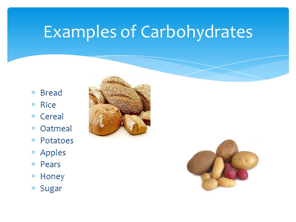 Are Most Animal Foods Good Sources Of Carbohydrates