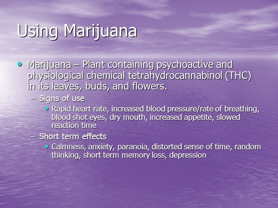 Using Marijuana Marijuana – Plant containing psychoactive and physiological chemical tetrahydrocannabinol (THC) in its leaves, buds, and flowers.