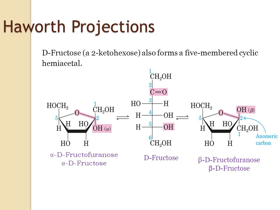 haworth projections If one group of the fischer projection is held steady, the other groups can be rotated either clockwise or  converting fischer projections into haworth projections .