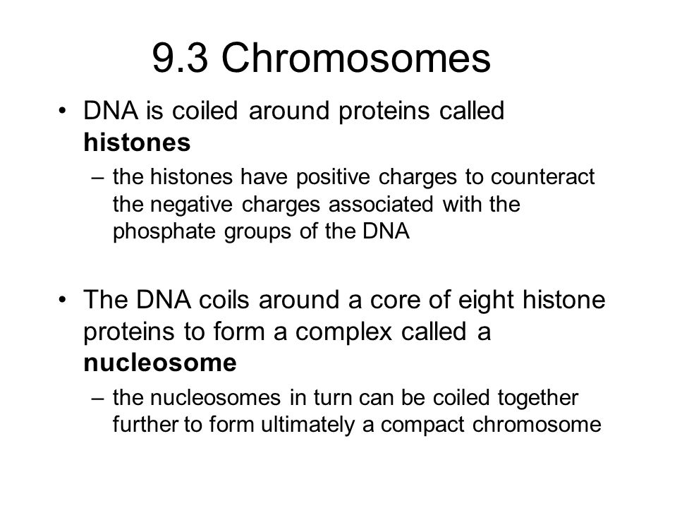 Welcome Back! Chapter 9 and 10 covers Cell Division Mitosis ...