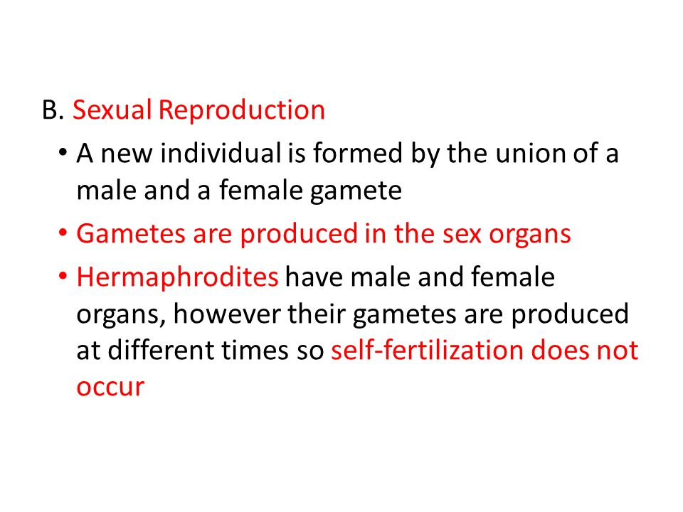 gametes and zygotes relationship quotes