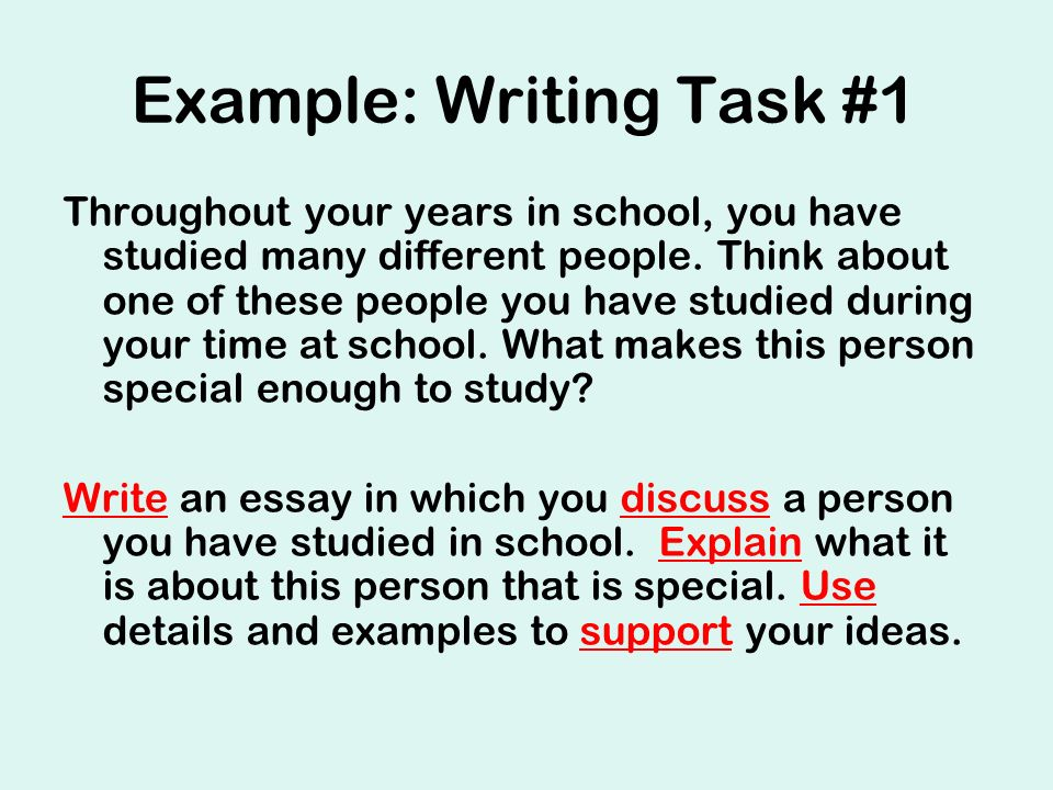 Writing Example Essay
