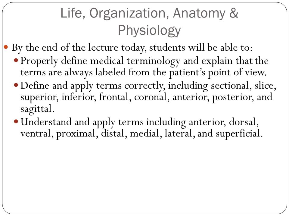 Life, Organization, Anatomy & Physiology - ppt video online download