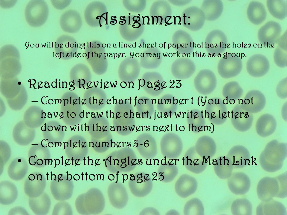 Assignment: Reading Review on Page 23