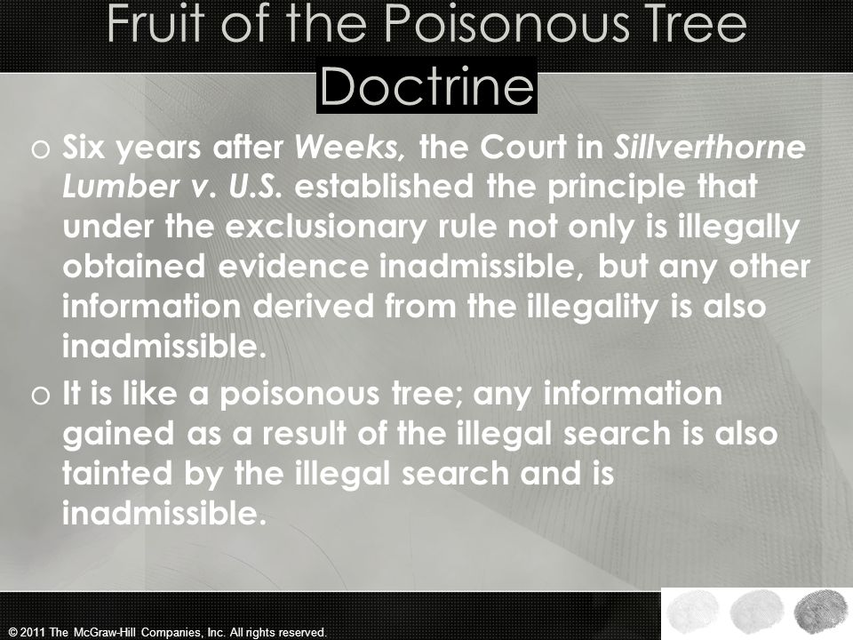 fruit of the poisonous tree doctrine The expression 'fruit of the poisonous tree' is a set term in anglo-american common law it stands in the context of unlawful investigations, searches and seizures and the question of.