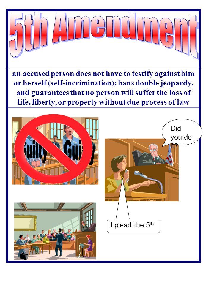 Double Jeopardy 5th Amendment 1st Amendment s...