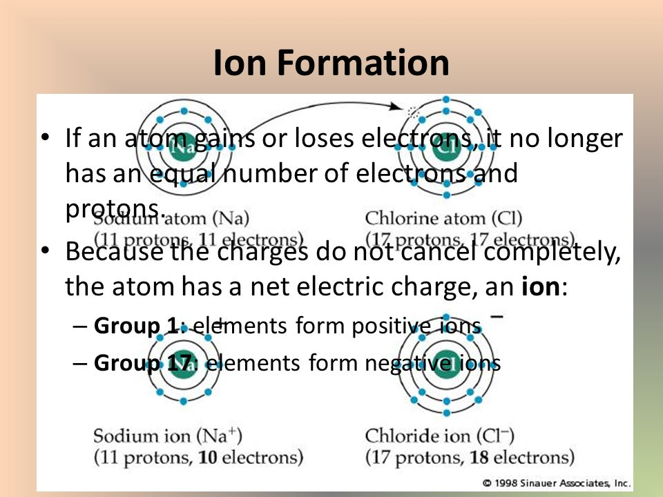 Section 2: Exploring the Periodic Table - ppt video online download