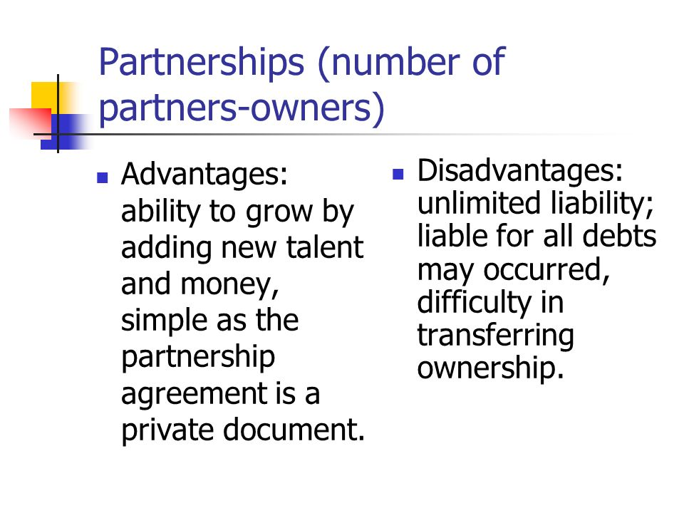 Partnerships (number of partners-owners)