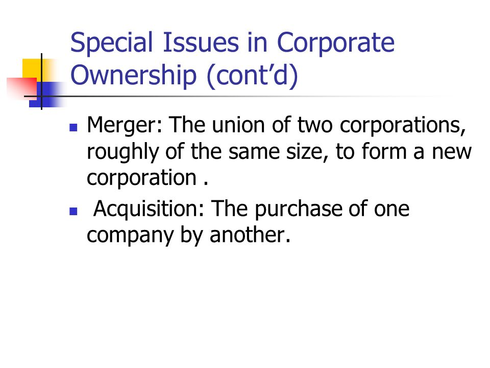 Special Issues in Corporate Ownership (cont'd)